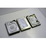 Hard Disk IDE 40 GB 7200 RPM 8 MB Maxtor Seagate WesterDigital Samsung