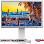 """Monitor LCD 22"""" Inch Nec Grad A"""